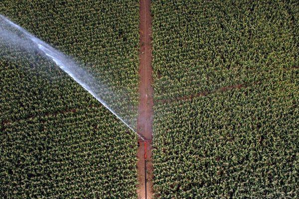 L'irrigation d'un champ dans le sud-ouest de la France