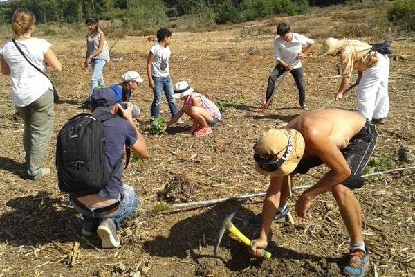 Des opposants au barrage de Sivens replantent des plants d'arbre pour symboliquement reboiser la zone humide