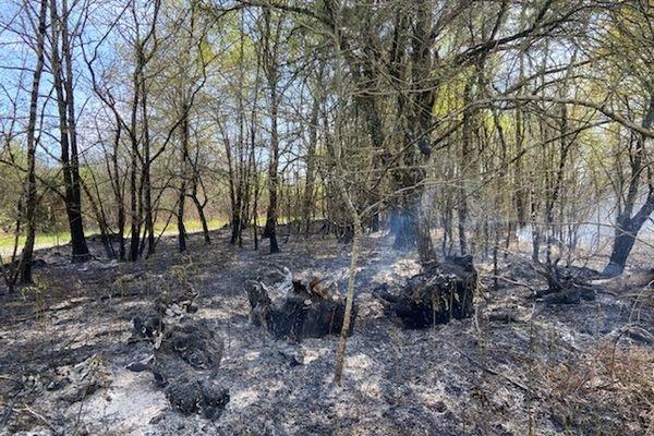 Les sols et la végétation sont très secs, ce qui pourrait favoriser une propagation rapide des flammes