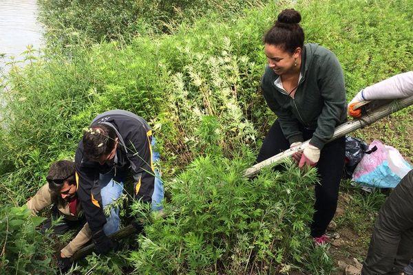 L'association Champ d'Actions organise des opérations de nettoyage de la Garonne deux à trois fois par mois.