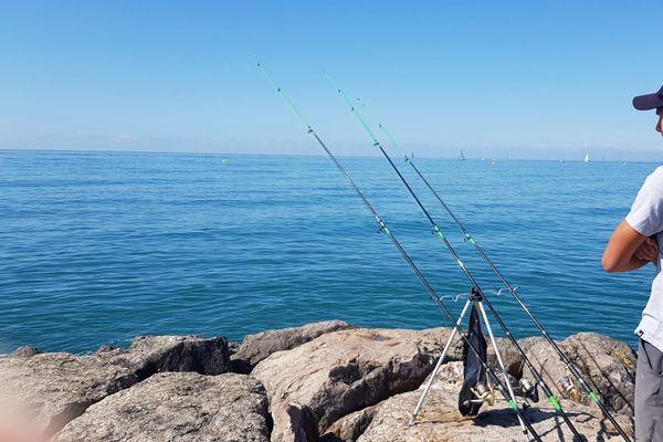Entre les baigneurs, les sportifs et les pêcheurs, la cohabitation est parfois difficile en bord de mer à Carnon-Plage dans l'Hérault.