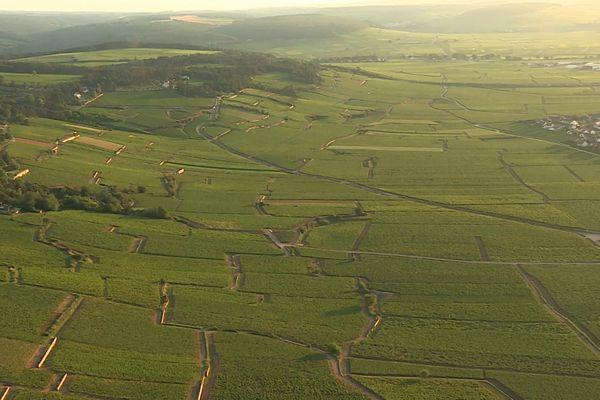Les vignes de Bourgogne vues du ciel