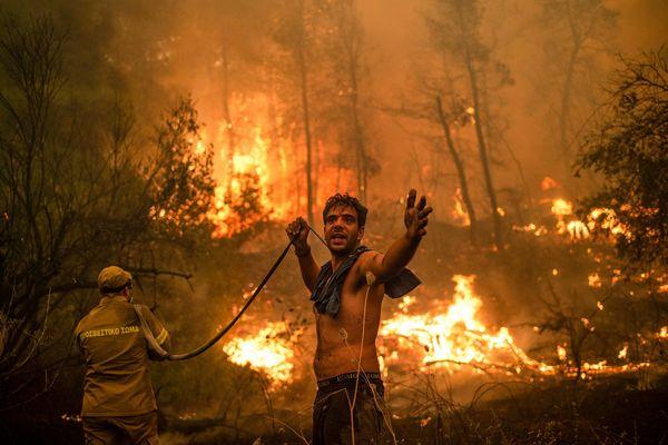 Incendie en Grèce, le 8 août 2021.