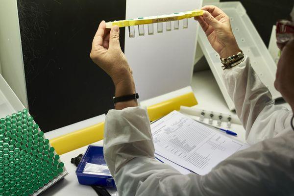 Dans un laboratoire de recherche à Marcy-l'Etoile, le 7 juillet 2016.