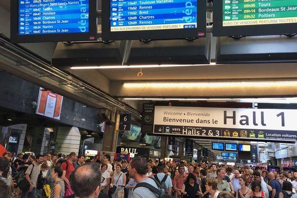 Un accident entre un TGV et un chevreuil a provoqué de nombreux retards en gare Montparnasse.