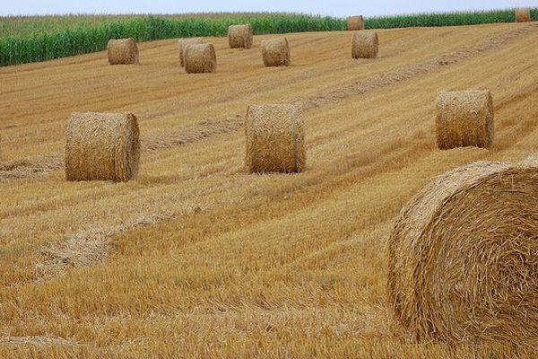 Les vols dans les fermes sont plus nombreux l'été car le matériel agricole est souvent bien plus exposé