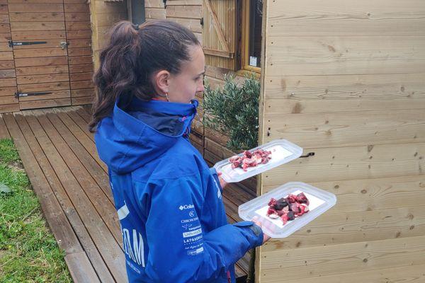 Eva Meyrier, biologiste du parc, apporte les plateaux repas des petits pensionnaires.