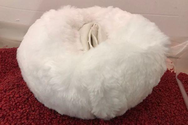 Une vulve en porcelaine et fourrure, l'une des pièces maîtresses de l'exposition Singulier.e, à découvrir jusqu'au 25 janvier 2020 à Strasbourg.