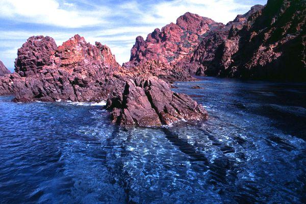 La réserve naturelle de Scandola est au cœur de la façade littorale du Parc naturel régional de Corse, pour partie classée en site Natura 2000 pour la richesse de son patrimoine et la présence d'espèces et d'habitats d'intérêt européen.