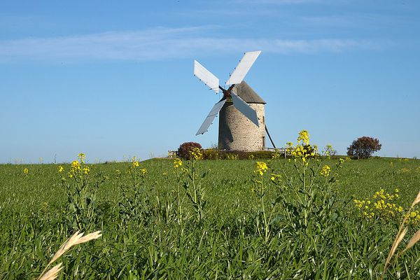 Dans la Manche, près du Mont St Michel, grand soleil sur le Moulin de Moidrey, classé en 2007 par l'UNESCO au patrimoine mondial.