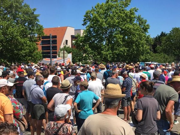 Quelque 500 vignerons se sont rassemblés à Colmar.