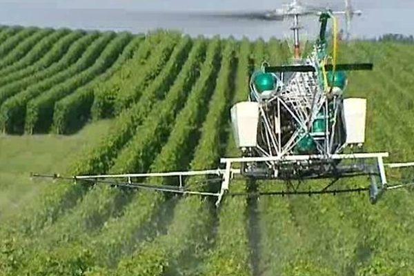 Epandage de produits phytosanitaires par hélicoptère - La Vigneronne