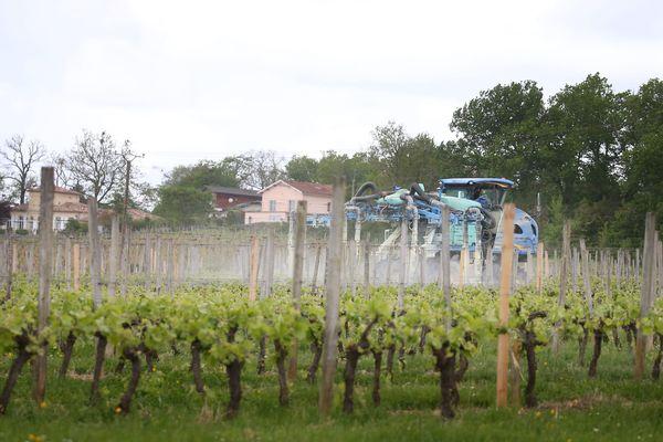 Épandage de pesticides dans les vignes, image d'illustration
