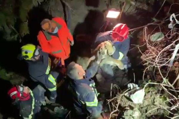 Les pompiers ont passé plusieurs heures à dégager l'accès au trou avant de pouvoir sortir le chien vers 19 heures.