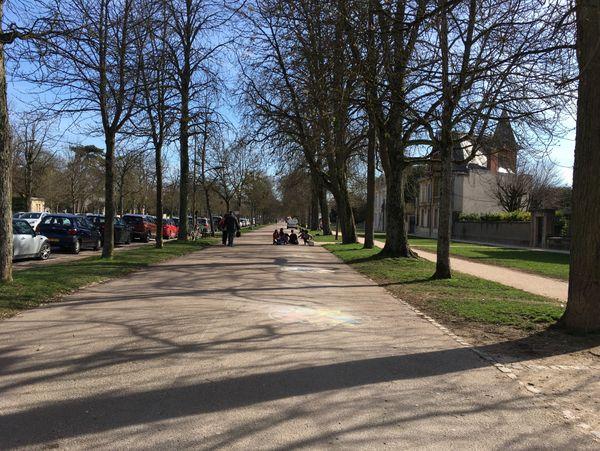 Les allées du Parc à Dijon mercredi 20 mars 2019. À droite, les mandalas s'alignant sur la promenade.
