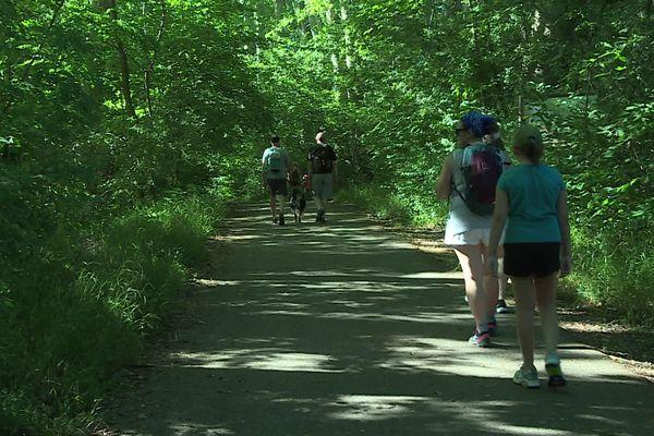 400.000 visiteurs se rendent chaque année dans la forêt de la Robertsau