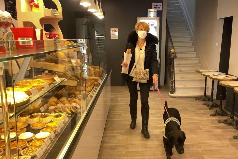 Devenir famille d'accueil quelques mois pour élever un chien guide d'aveugle ça vous dit ?