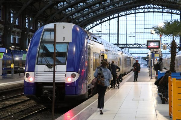 TER Hauts-de-France en gare - Illustration