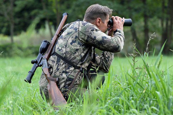Dans le Mont-Ventoux, seule la chasse à l'approche est autorisée dans le cadre des plans de chasse.