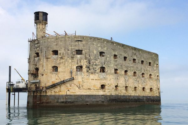 Les tournages du célèbre jeu reprennent le 22 mai sur le Fort Boyard.