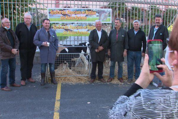 Mobilisation des négociants en bestiaux des Hautes-Pyrénées face à la maladie de la langue bleue
