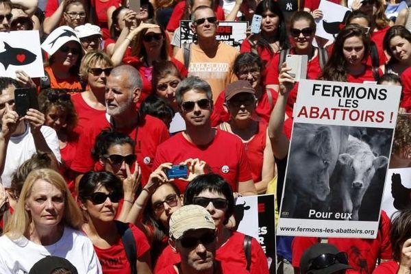 Manifestants à Paris pour la fermeture des abattoirs en France, le 10 juin 2017 à Paris.