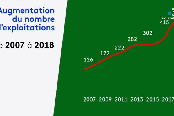 En dix ans, le nombre d'exploitation bio en Corse a quadruplé.