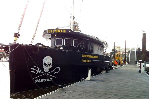 Le Columbus, de l'ONG Sea Shepherd, pourra passer l'hiver à Saint-Gilles-Coirx-de-Vie