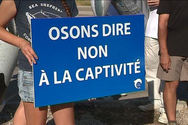 Des pancartes pour attirer l'attention du public.