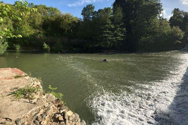 La rivière Arize qui traverse la commune de Rieux-Volvestre.