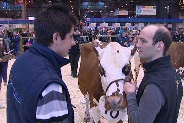 Florian Gautier, élève de terminale en Eure-et-Loir, participe au concours du jugement des animaux du salon de l'agriculture