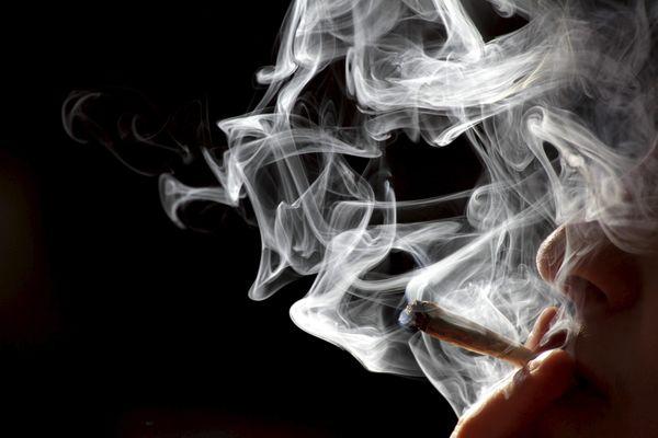 Une mission parlementaire sur l'usage du cannabis est en cours. Les résultats sont attendus avant la fin de l'année 2020.