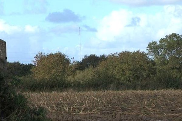 Cinq éiliennes géantes doivent être implantées sur les communes de Muneville-le-Bingard,Vaudrimesnil et Millieres. Leur voisine, La Ronde-Haye , conteste le projet