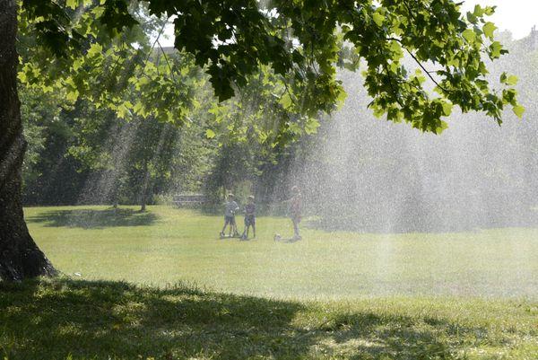 Un mercredi matin au soleil, pour jouer en famille au moment où la végétation profite de l'arrosage matinal