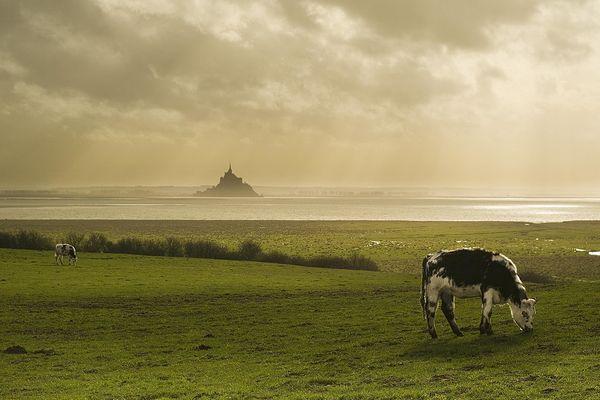 Le Mont-St-Michel passera ce lundi et l'essentiel de cette semaine dans une atmosphère très nuageuse.