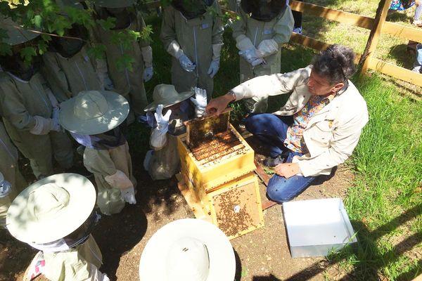 Les enfants découvrent le monde des abeilles, et l'importance de la biodiversité