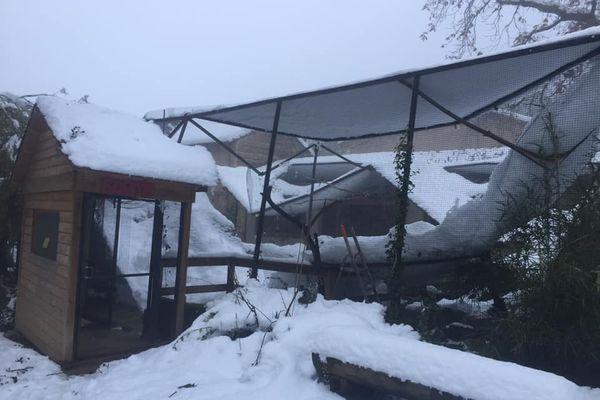 Des dégâts considérables au zoo d'Upie dans la Drôme, après l'épisode de neige du jeudi 14 novembre 2019. (15/11/19)