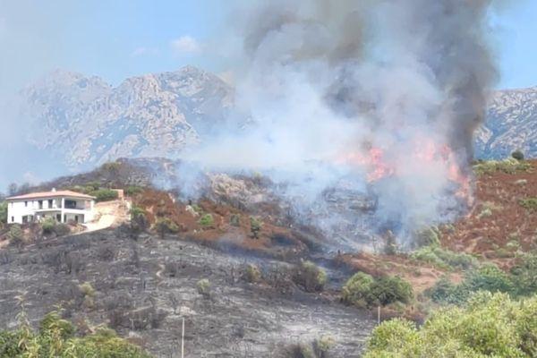 L'incendie s'est déclaré dans l'après-midi dans la plaine de Peri (Corse-du-Sud)