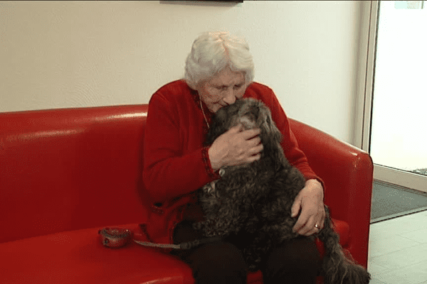 Les animaux, un réconfort pour les personnes âgées