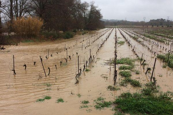 Dans l'Aude les agriculteurs ont été très touchés par les dernières intempéries - 16 février 2017
