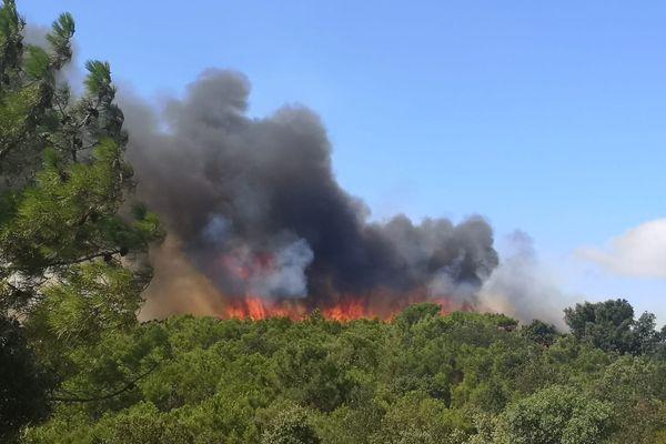 L'incendie de Bizanet continue sa propagation, les fortes températures et les rafales de vent font craindre aux pompiers le pire - 17 août 2021
