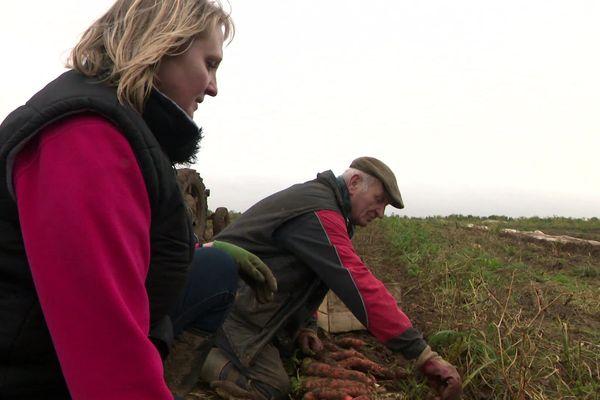 Sophie D'Hoine et son père Régis D'Hoine :  la transition agricole