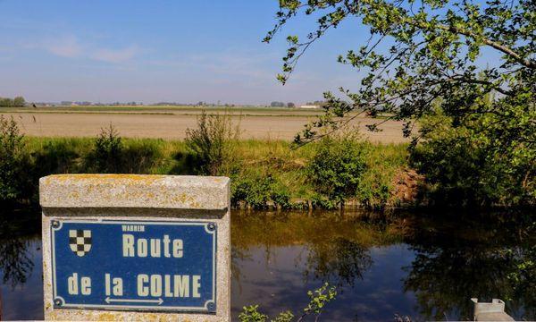 Le canal de la Colme à hauteur de Warhem.