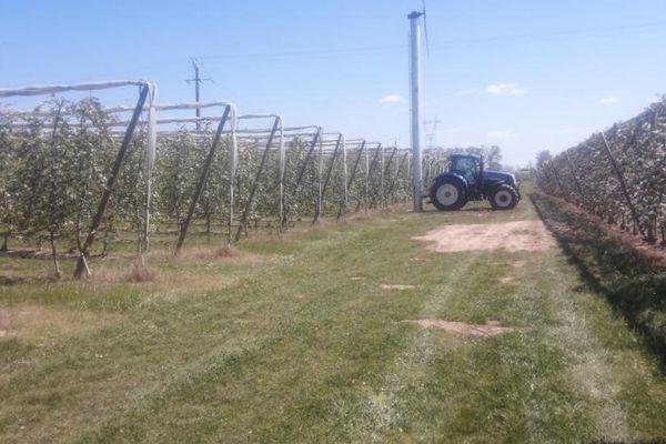Lutte contre le gel des arboriculteurs-Tour à vent installée dans les vergers à Lizac dans le Tarn-et-Garonne-