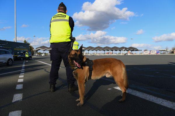 Un gendarme de la brigade cynophile lors d'un contrôle routier - Photo d'illustration