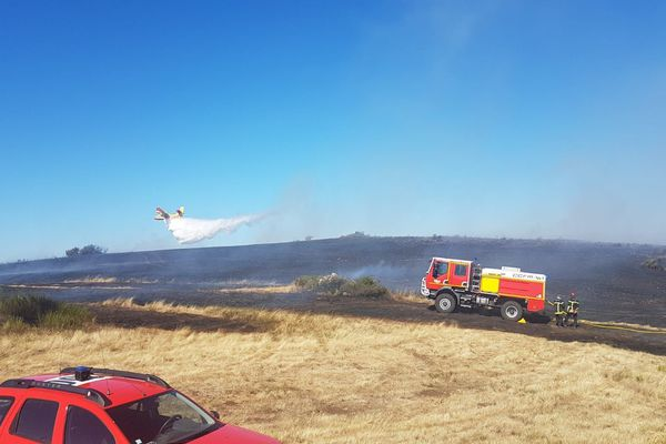 D'importants moyens humains et aériens déployés sur la commune des Plans près de Lodève dans l'Héraut pour maîtriser un feu de pinède.