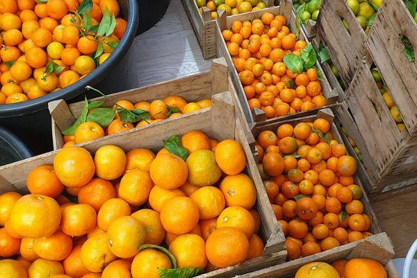 A Monaco, l'Orangerie récupère les oranges amères récoltées par les jardiniers du Prince pour en faire de l'alcool.