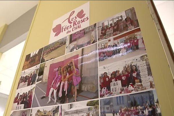"""Association """"Les fées roses du CHAL"""""""