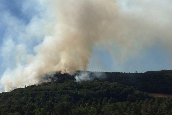 Le feu a pris en bordure de route et s'est propagé à la forêt