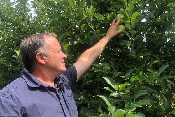 Les producteurs de Dordogne de la pomme d'appellation Pomme du Limousin sont à la recherche d'un millier de saisonniers